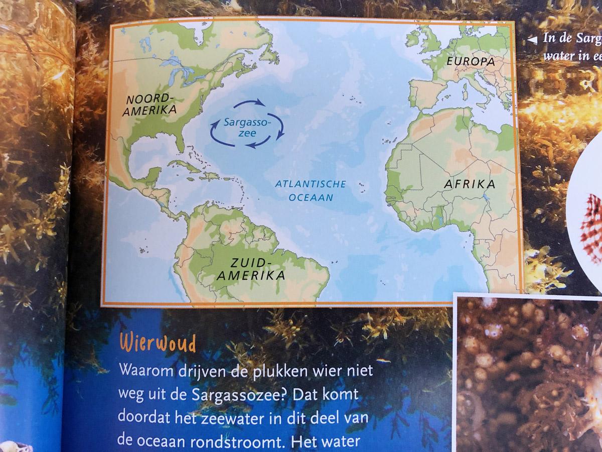 Delubas-Atlantis
